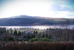 Loch Ness Shores